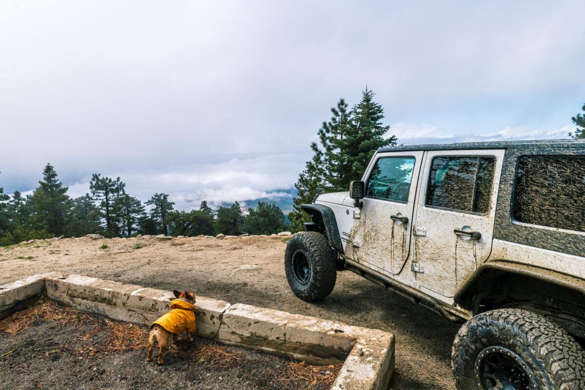 jeep in Idyllwild