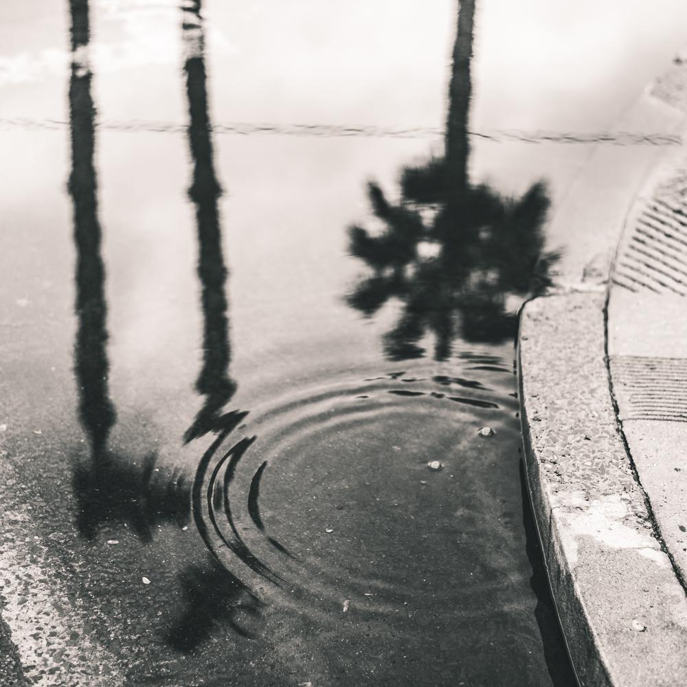 Encinitas photography