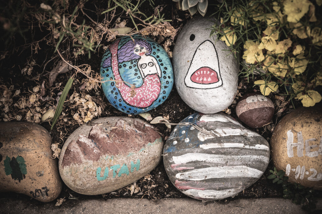 encinitas rock garden